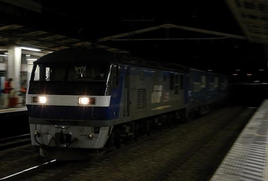 DSC_1233.JPG